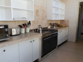 traci-arens-kitchen-mosaic-before-1